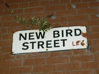 New Bird Steet